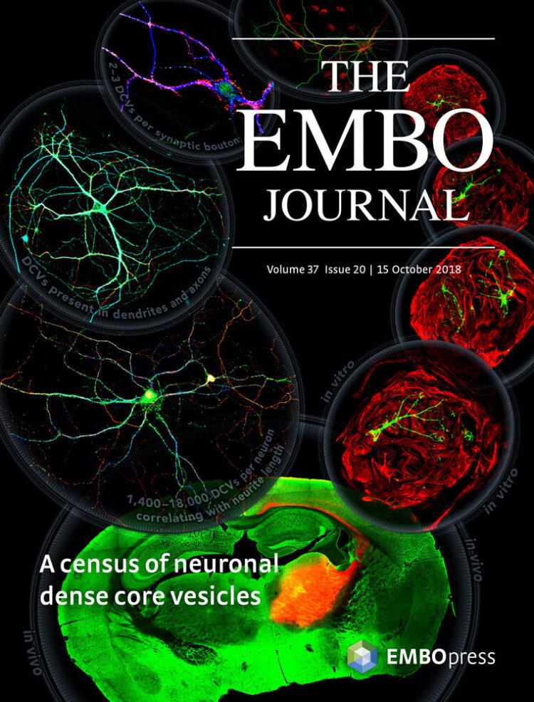 Wetenschappelijk tijdschrift